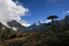 Os Himalayas Imagens de Stock