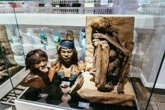Os homens das cavernas indicam no museu da história natural Fotos de Stock Royalty Free