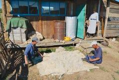 Os homens do Mongolian produzem o feltro fora da casa em Harhorin, Mongólia Fotos de Stock Royalty Free
