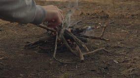 Os homens entregam põem o ramo na fogueira pequena na fogueira da floresta da noite Movimento lento vídeos de arquivo