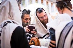 Os homens judaicos ortodoxos rezam na parede ocidental Foto de Stock