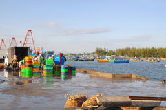 Os homens locais estão limpando suas cestas que foram usadas transportando peixes do barco ao caminhão Fotos de Stock Royalty Free