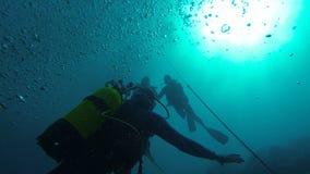 Os homens no mergulho trajam a natação nas águas profundas do oceano enchidas com a luz do sol filme