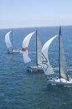 Os iate competem em Team Sailing Event imagens de stock royalty free