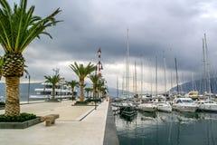 Os iate estacionaram em Porto Montenegro, Tivat, Montenegro Imagem de Stock Royalty Free