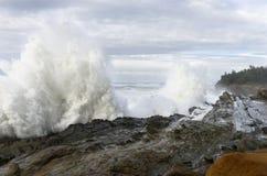 Os inchamentos de uma década que deixa de funcionar contra os penhascos do parque estadual dos acres da costa, arrulham baía Oreg Foto de Stock Royalty Free