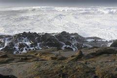Os inchamentos de uma década que deixa de funcionar contra os penhascos do parque estadual dos acres da costa, arrulham baía Oreg Imagem de Stock