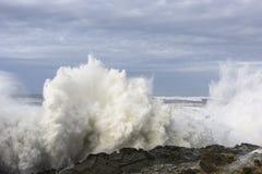 Os inchamentos de uma década que deixa de funcionar contra os penhascos do parque estadual dos acres da costa, arrulham baía Oreg Fotografia de Stock Royalty Free