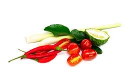 Os ingredientes ajustados para a sopa picante tailandesa Tom-yum incluem o nardo fotografia de stock royalty free