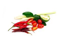 Os ingredientes ajustados para a sopa picante tailandesa Tom-yum incluem o nardo fotos de stock