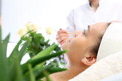 Os ingredientes naturais nos cosméticos, suco de vera do aloés Imagens de Stock Royalty Free