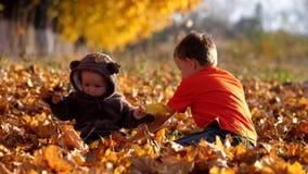 Os irmãos felizes sentam-se na folha do outono e jogam-se com folhas, traje do urso de peluche vídeos de arquivo