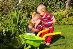 Os irmãos pequenos apreciam o jardim Foto de Stock Royalty Free