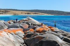 Os jardins - baía dos fogos - Tasmânia foto de stock royalty free
