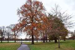 Os jardins de Kensington Foto de Stock Royalty Free