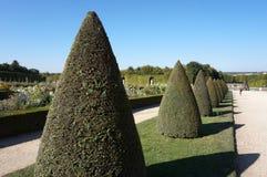 Os jardins do palácio de Versalhes Imagens de Stock