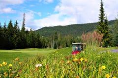 Os jogadores de golfe fotos de stock royalty free