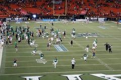 Os jogadores e os fãs da Universidade do Havaí apressam-se no campo à celebridade Fotos de Stock Royalty Free