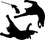 Os jogos do gato Fotografia de Stock Royalty Free