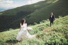 Os jovens wed recentemente pares, beijo dos noivos, abraçando na vista perfeita das montanhas, céu azul fotos de stock royalty free