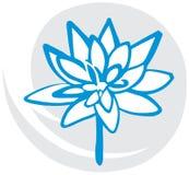 Os lótus florescem no azul Foto de Stock Royalty Free