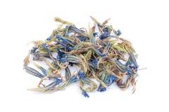 Os lótus secados florescem o chá isolado fotos de stock royalty free