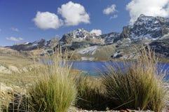 Os lagos azuis de Ticlio fotografia de stock