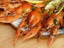 Os lagostins Fotografia de Stock Royalty Free