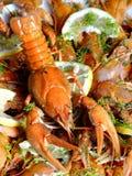 Os lagostins Foto de Stock Royalty Free