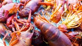 Os lagostins de Louisiana fervem pr?ximo acima imagem de stock royalty free