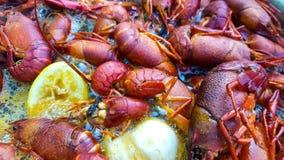 Os lagostins de Louisiana fervem pr?ximo acima imagens de stock