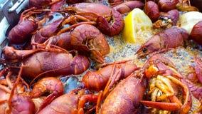 Os lagostins de Louisiana fervem pr?ximo acima fotos de stock royalty free