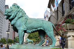 Os leões Fotografia de Stock