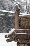 Leão e dragão chineses no inverno fotografia de stock royalty free