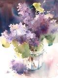 Os lilás na aquarela do vaso florescem a ilustração pintado à mão Fotos de Stock