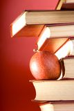 Os livros do vermelho Foto de Stock