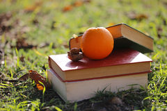 Os livros e os alimentos saudáveis Imagem de Stock