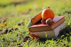 Os livros e os alimentos saudáveis Foto de Stock