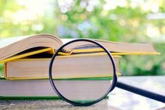 Os livros zumbiram pela lupa em vagabundos verdes naturais borrados imagem de stock royalty free