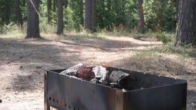 Os logs de madeira queimam-se na grade, adicionando um líquido mais claro aos carvões amassados vídeos de arquivo