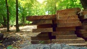 Os logs e os troncos de árvore de madeira são colocados sobre se que encontra-se perto de uma casa de madeira na floresta filme