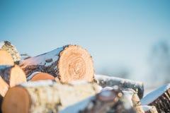 Os logs viram uma madeira em um fundo do céu azul Fim acima fotos de stock royalty free