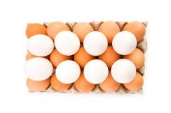 Os lotes dos ovos na caixa isolaram-se Fotografia de Stock