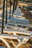 Os lotes esvaziam loungers do sol Imagem de Stock