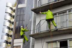 Os líquidos de limpeza de janela trabalham na construção alta da elevação Imagem de Stock Royalty Free
