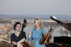 Os músicos jogam a imagem do violino e do contrabaixo no fundo da cidade imagens de stock royalty free