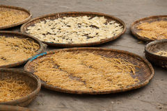 Os macarronetes vietnamianos secam no sol fotos de stock