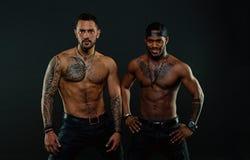 Os Machos com os torsos tattooed musculares olham fundo atrativo, escuro Atletas nas caras seguras com o nude muscular imagem de stock royalty free