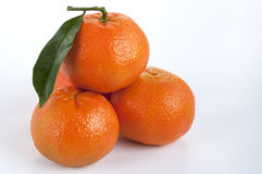 Os mandarino Imagens de Stock