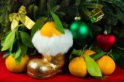 Os mandarino ao lado da árvore de Natal Foto de Stock Royalty Free